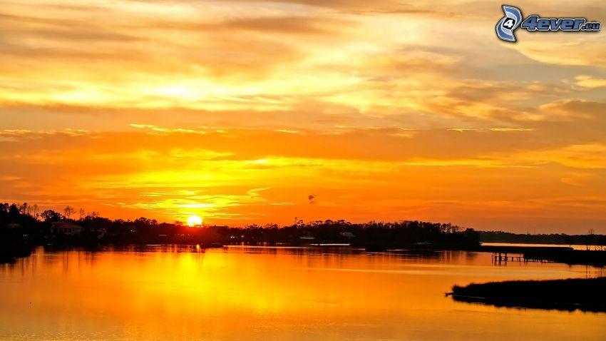 tramonto dietro il bosco, lago, cielo giallo