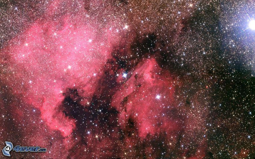 nebulose, stelle