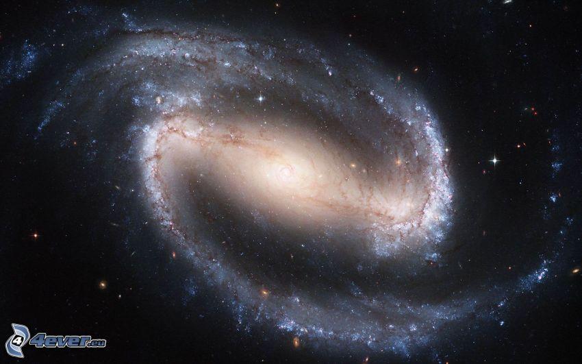 NGC 1300, galassia spirale barrata, stelle
