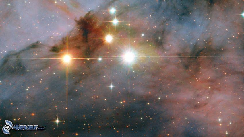 stelle, nebulose