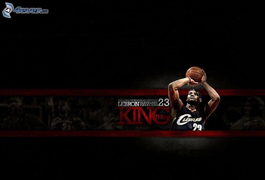 LeBron James, pallacanestro