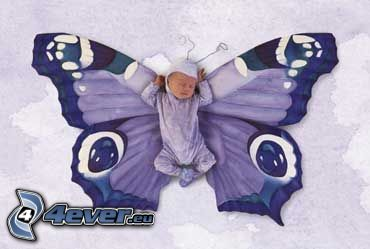 bambino, farfalla, costume