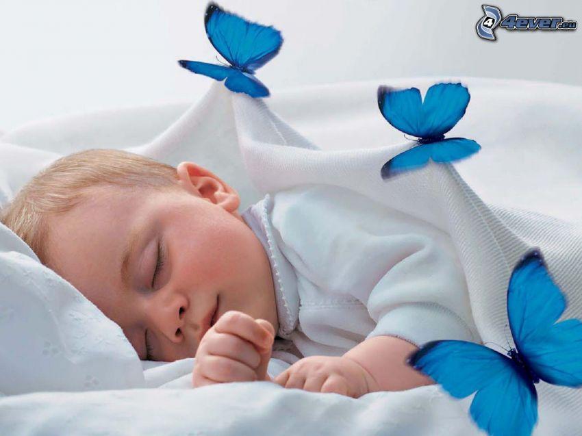 bambino che dorme, farfalle blu, coperta