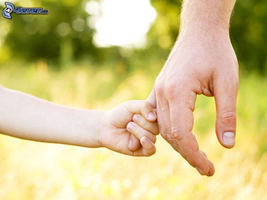 mani, papà, bambino