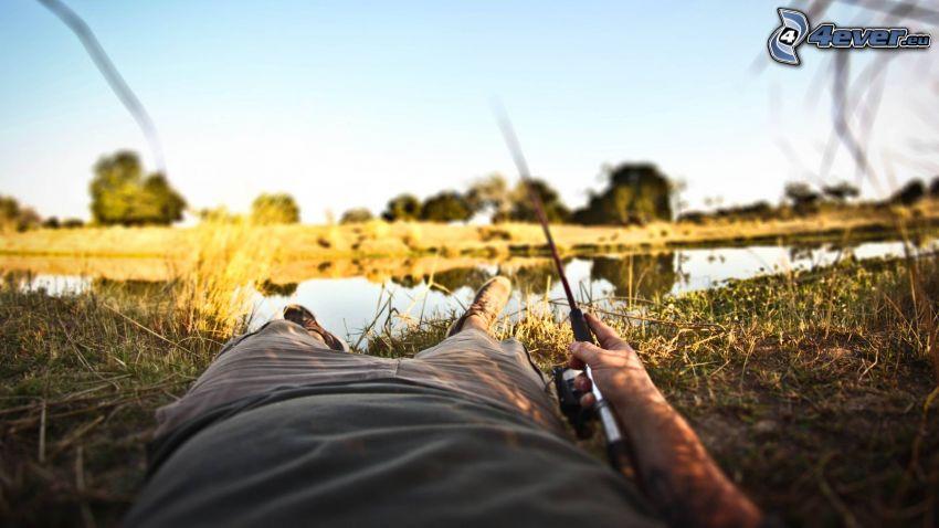 pescatore, canna da pesca, lago