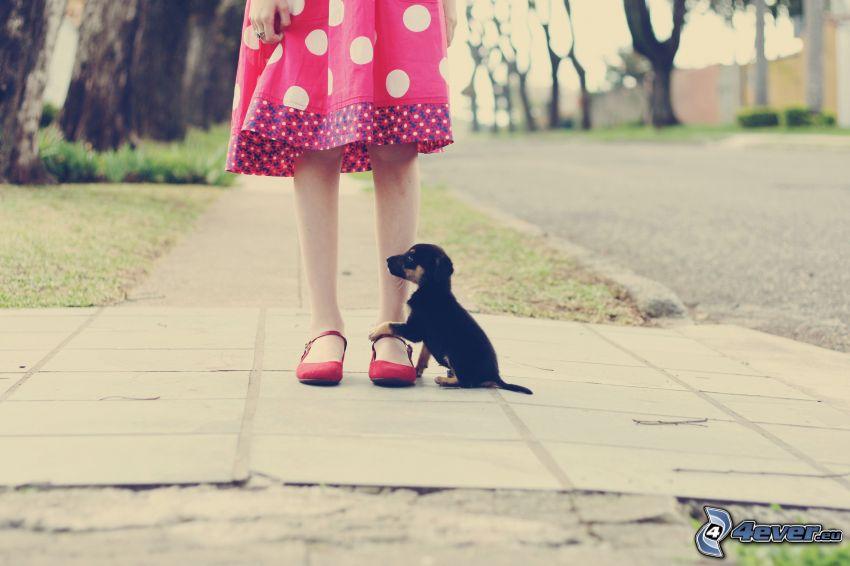 ragazza, cucciolo, marciapiede