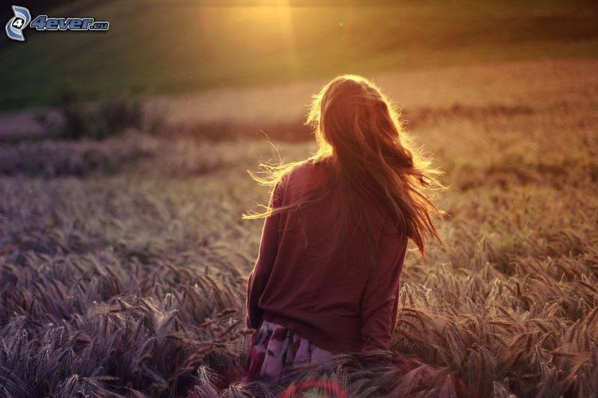 ragazza in campo, campo di frumento, sole