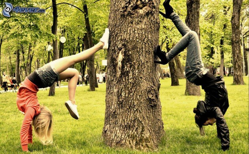 ragazze, acrobazia, tronco
