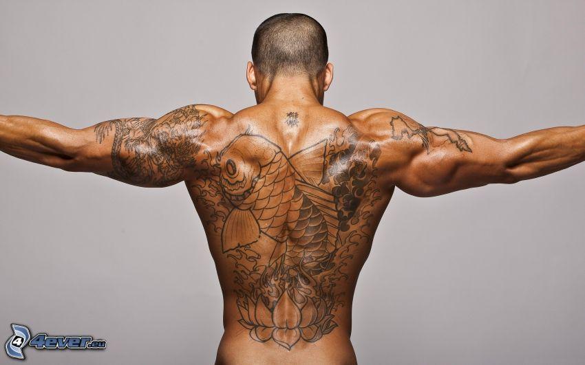 ragazzo tatuato, schiena, muscoli