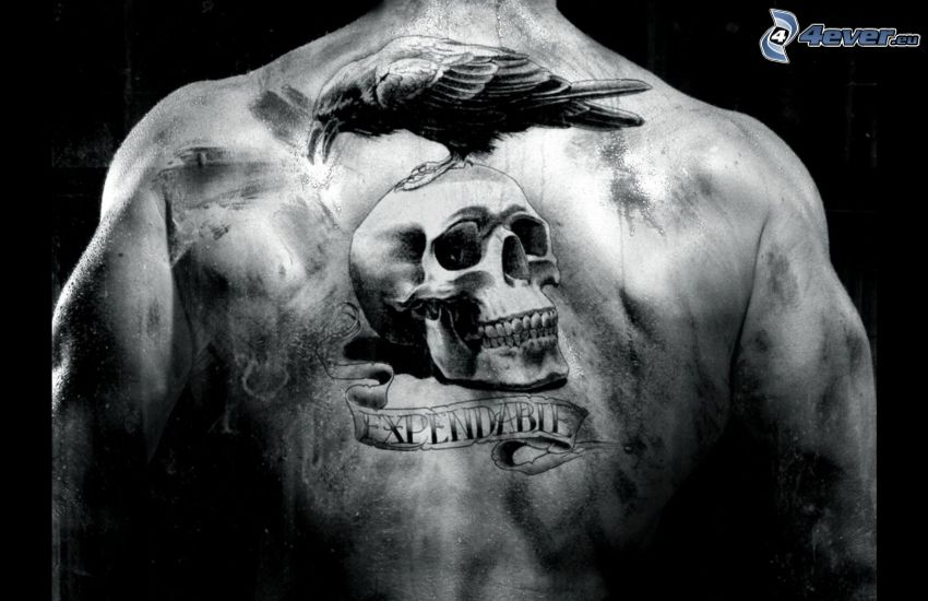 tatuaggio, cranio, cornacchia, schiena
