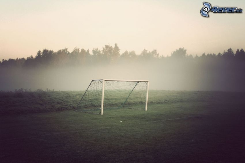 goal, foresta, parco giochi