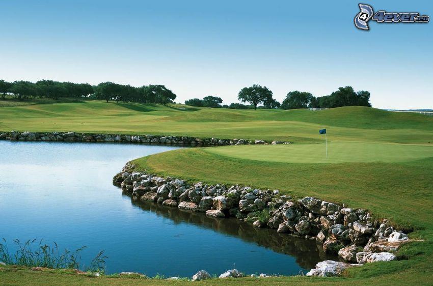 campo da golf, laghetto