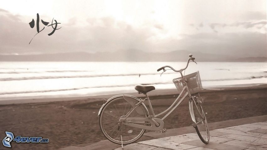 bicicletta, diga