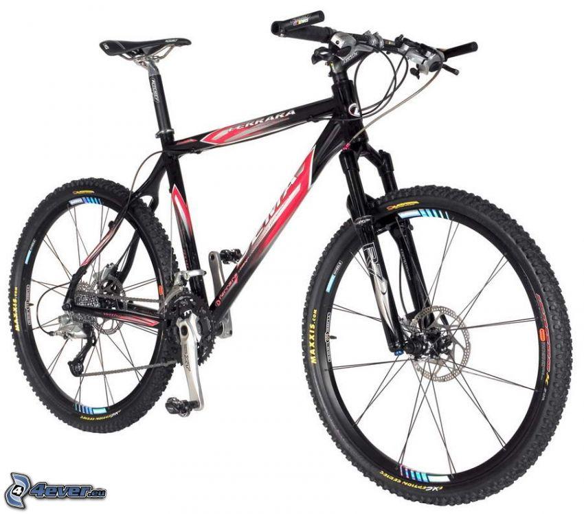 Ferrara, mountain bike