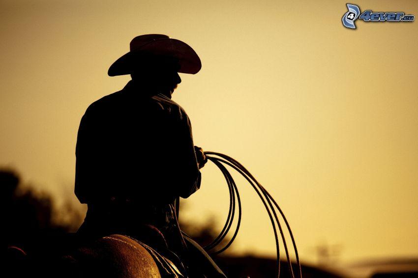 equitazione, cowboy, siluette