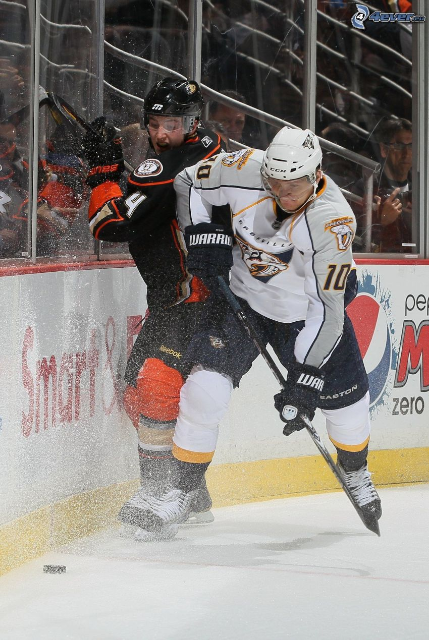 NHL, partita, Nashville Predators, Anaheim Mighty Ducks