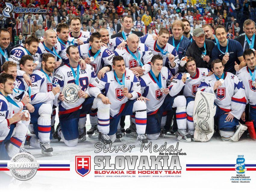 Squadra di hockey su ghiaccio slovacco, Helsinki 2012, argento