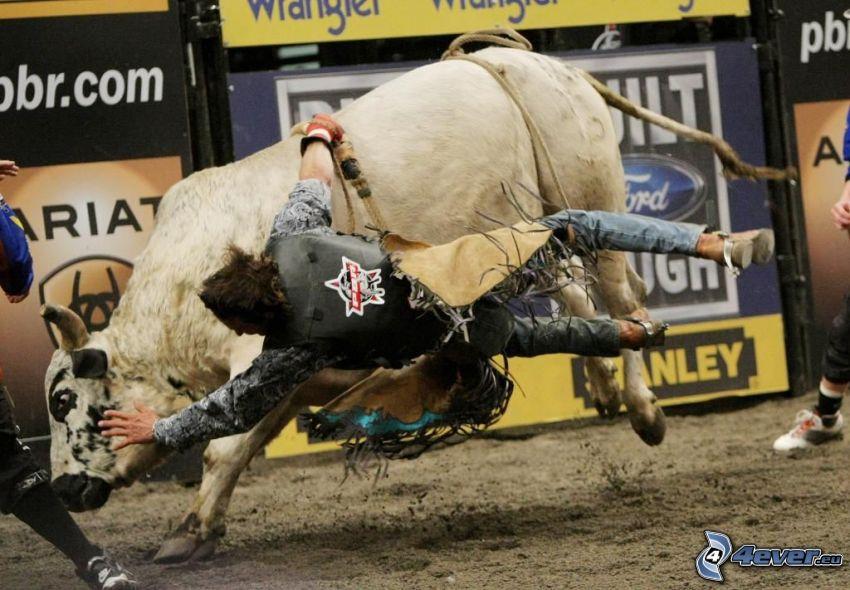 rodeo, caduta