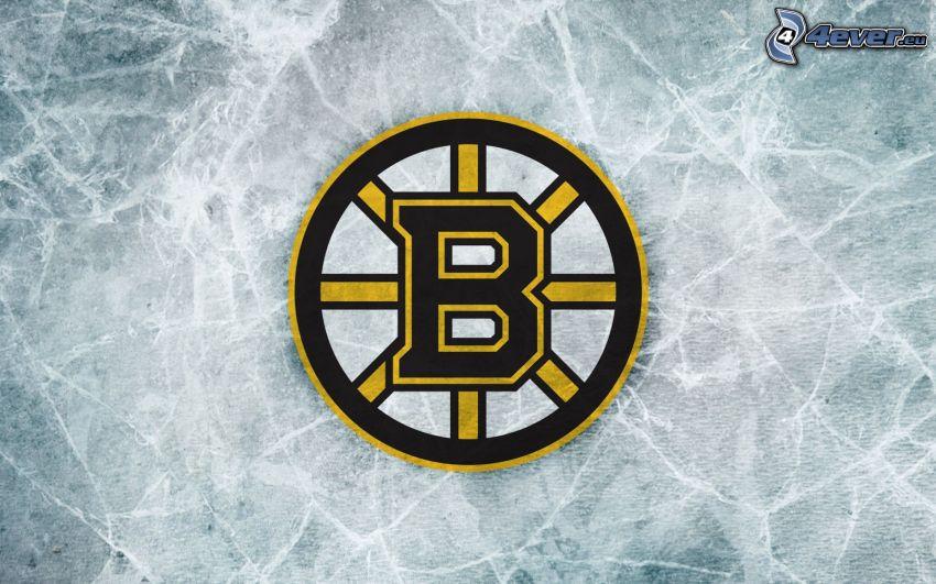 Boston Bruins, logo, NHL