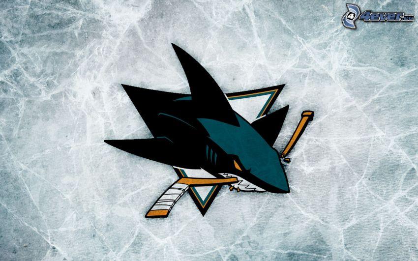 San José Sharks