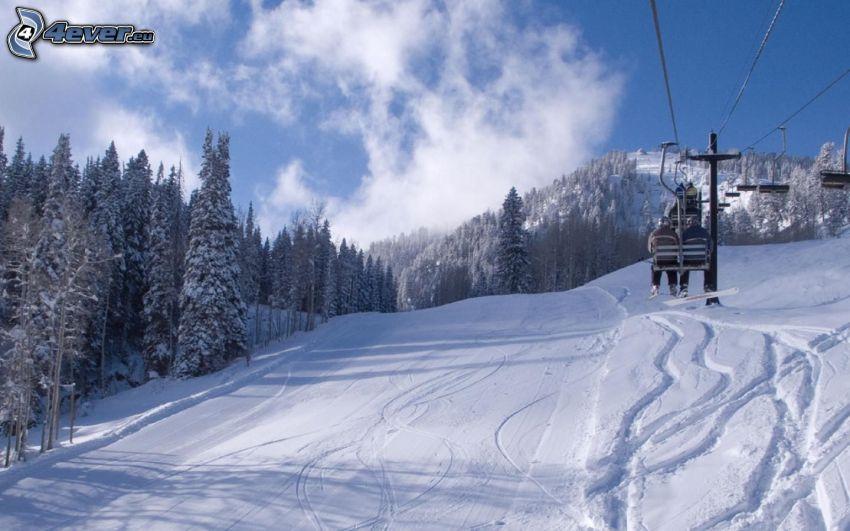 pista da sci, funicolare, alberi coperti di neve