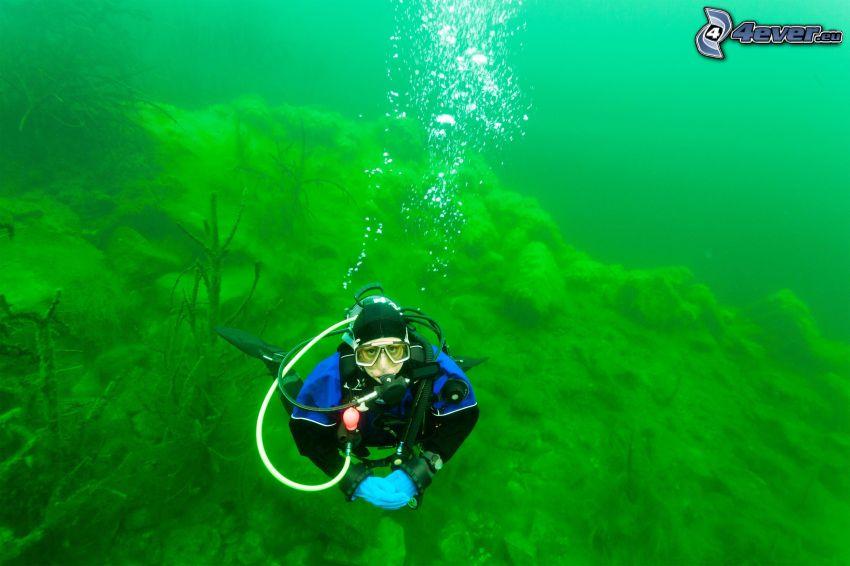 subacqueo, fondale marino