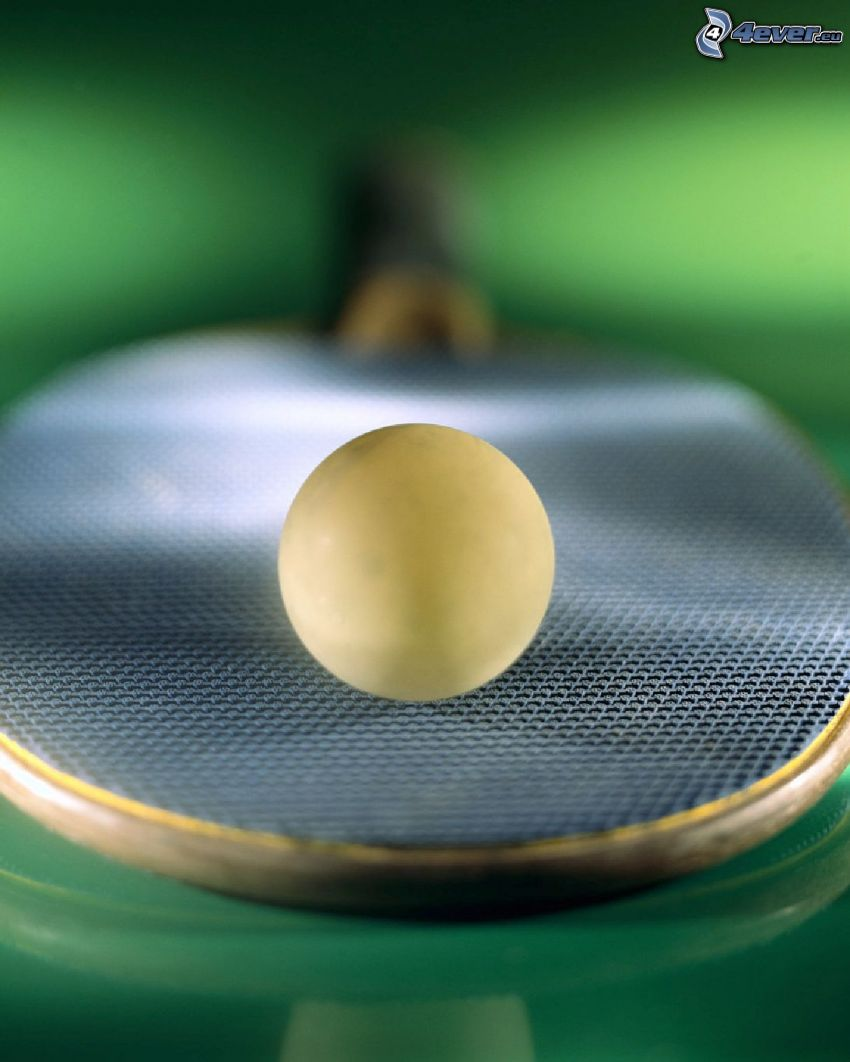 tennistavolo, palla, racchetta