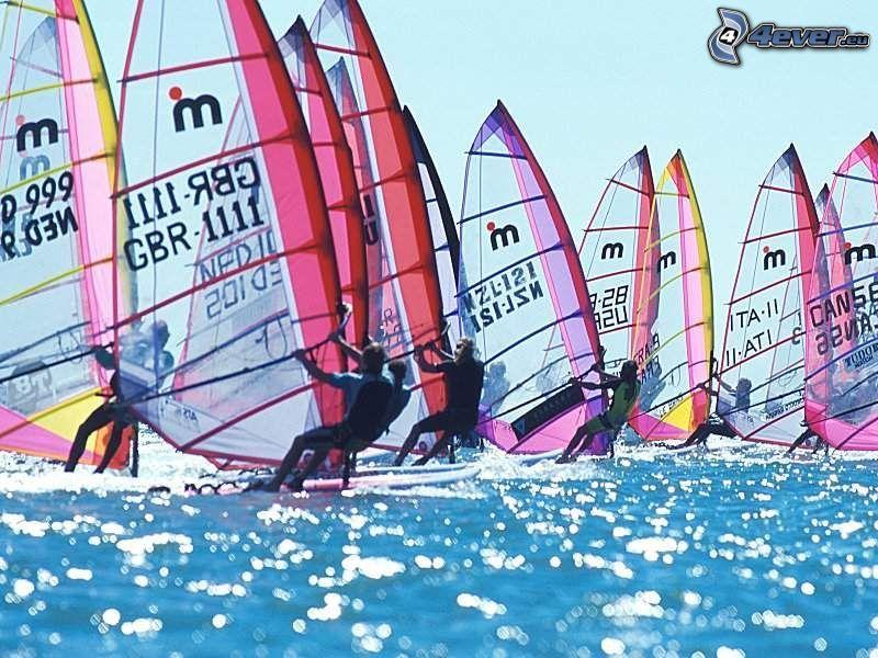 windsurf, acqua, canottaggio