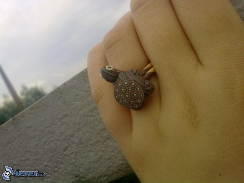 anello, tartaruga, mano