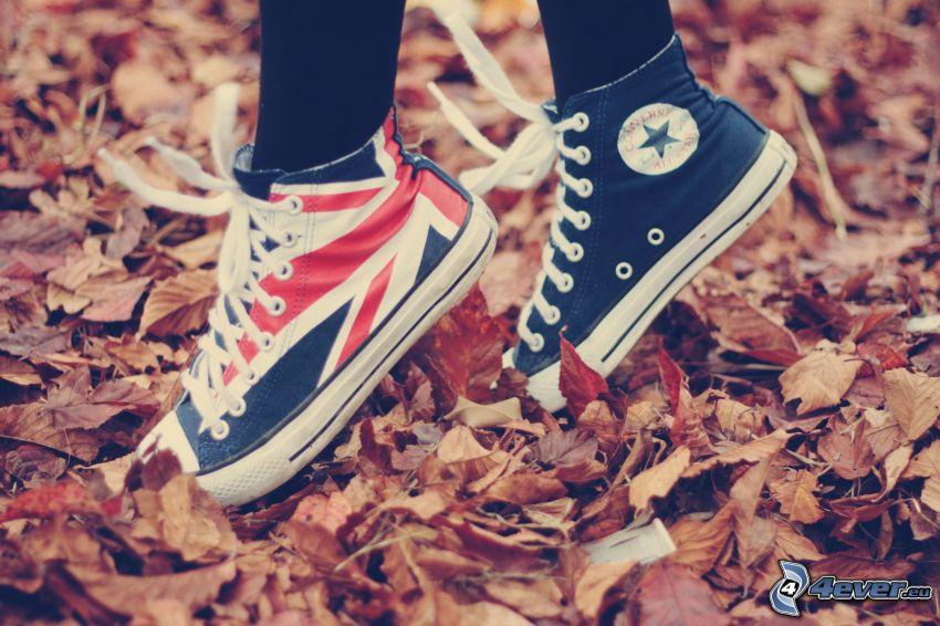Converse, foglie di autunno