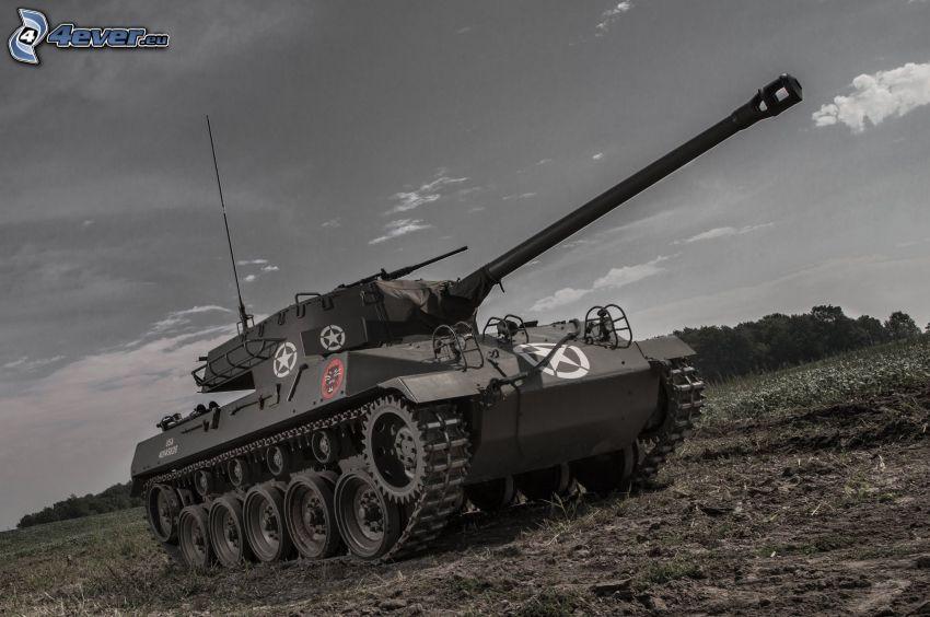 M18 Hellcat, carro armato, prato