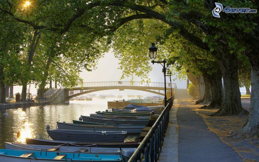 barche vicino alla riva, ponte, marciapiede, viale albero