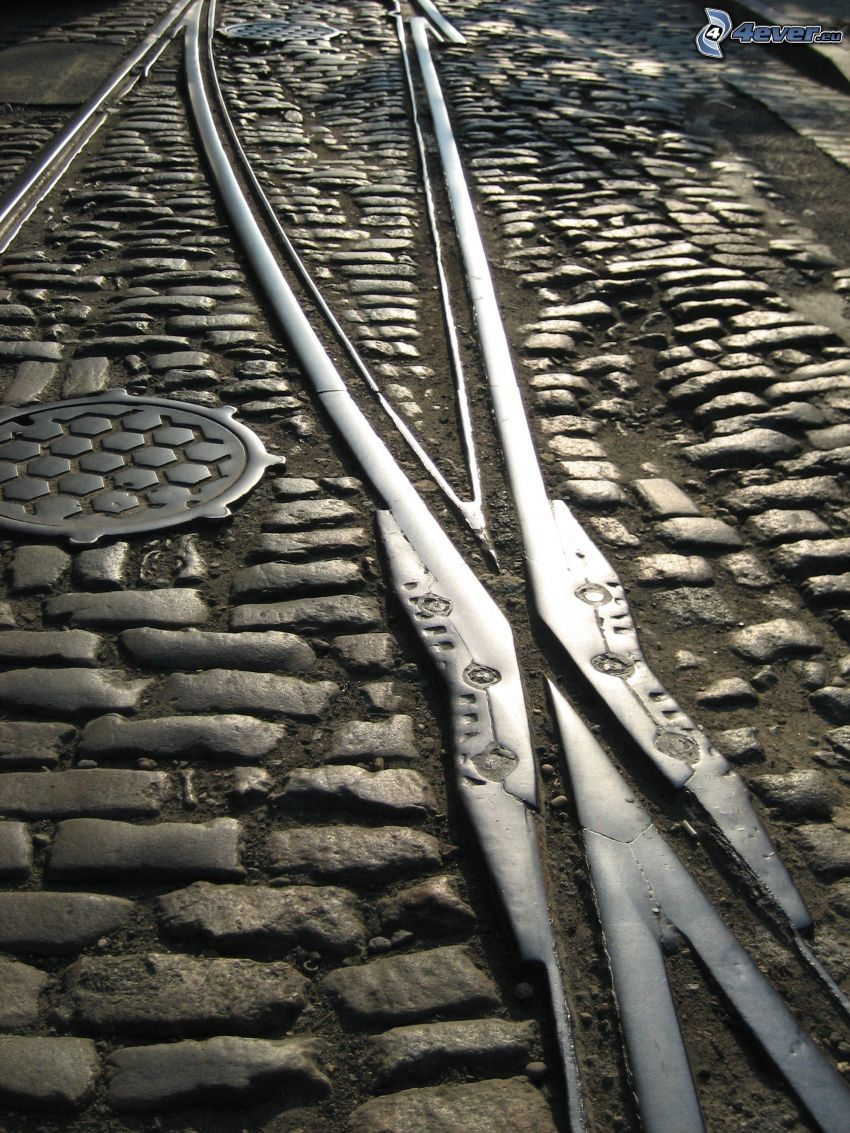 binari del tram, piastrelle, strada