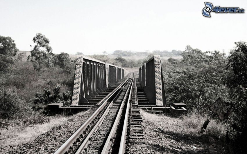 ponte ferroviario, rotaia vignoles