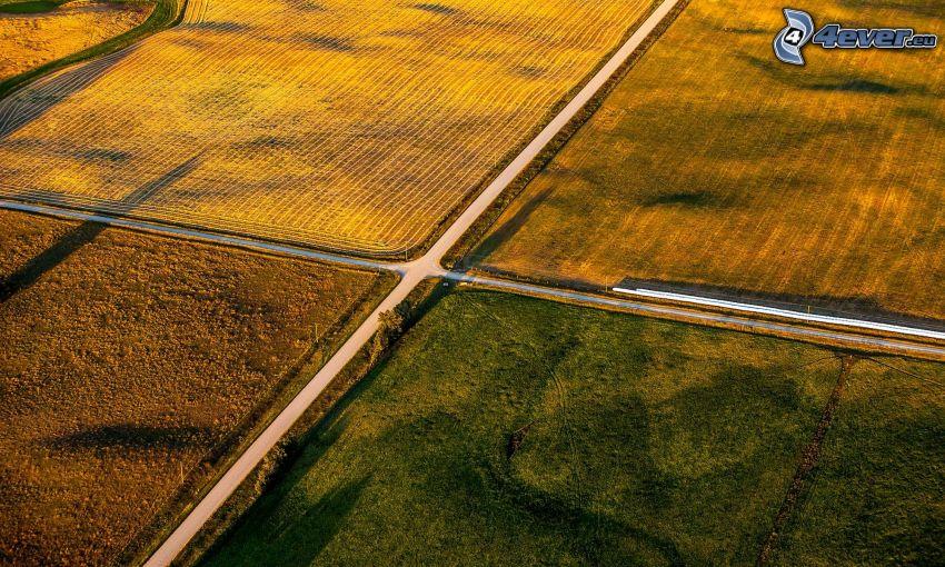 strada, incrocio, campi
