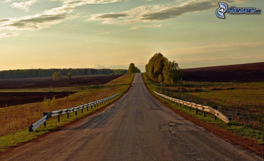 strada, prati, alberi, nuvole