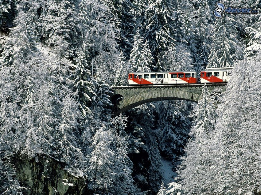 treno, ponte ferroviario, alberi coperti di neve