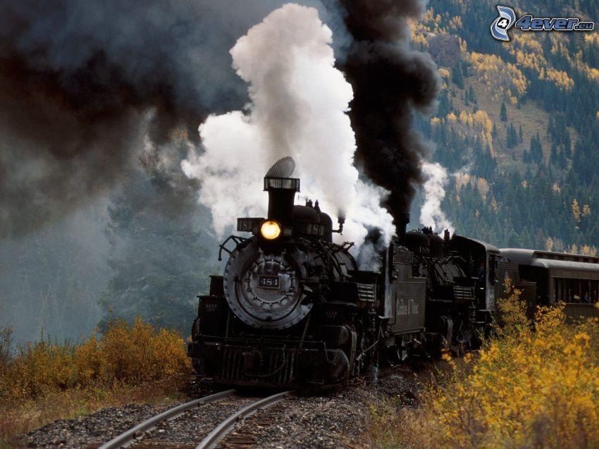 treno a vapore, foresta, fumo
