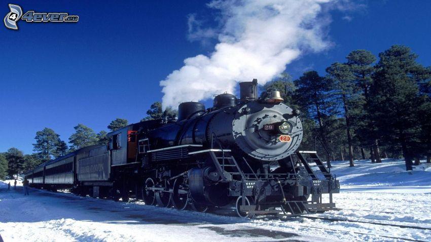 treno a vapore, neve, alberi