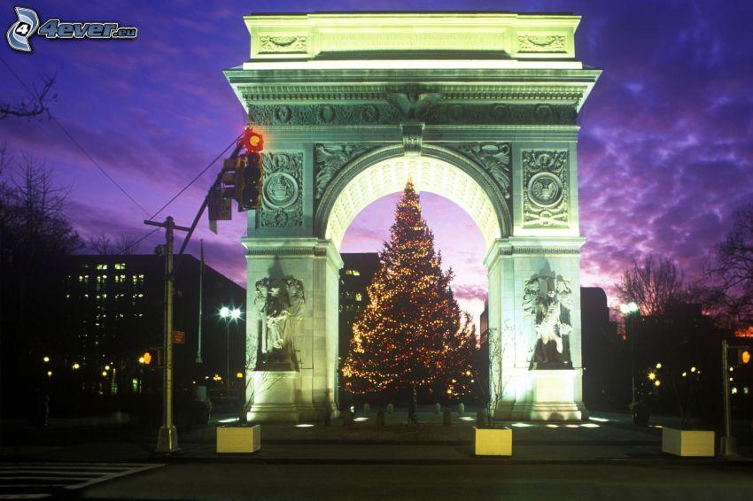 albero di Natale, Washington