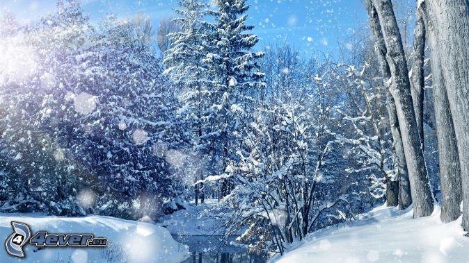 havas fák, havas erdő, folyó, hóesés