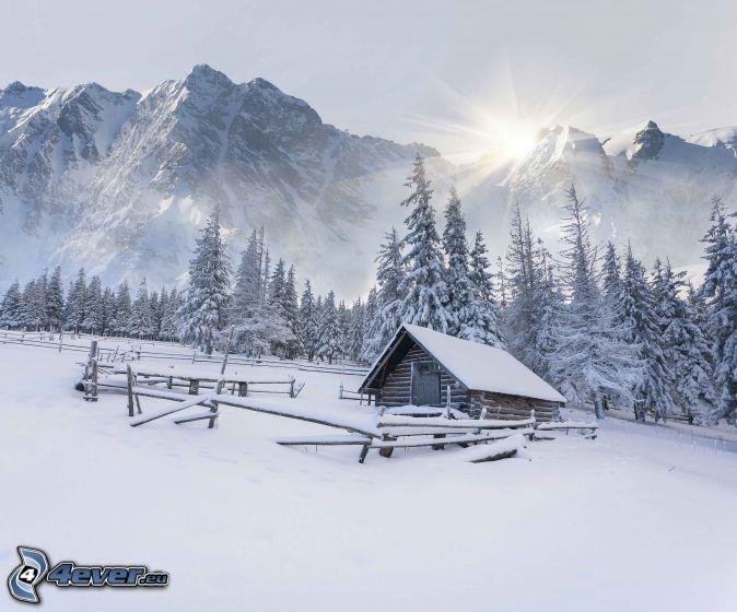 havas házikó, havas fák, havas hegyek, nap