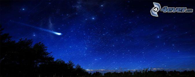éjjeli égbolt, üstökös, erdő sziluettje