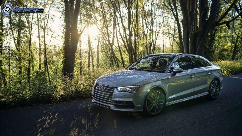 Audi S3, erdő, napsugarak az erdőben