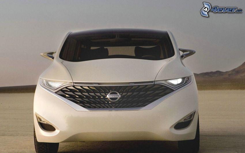Nissan, koncepció