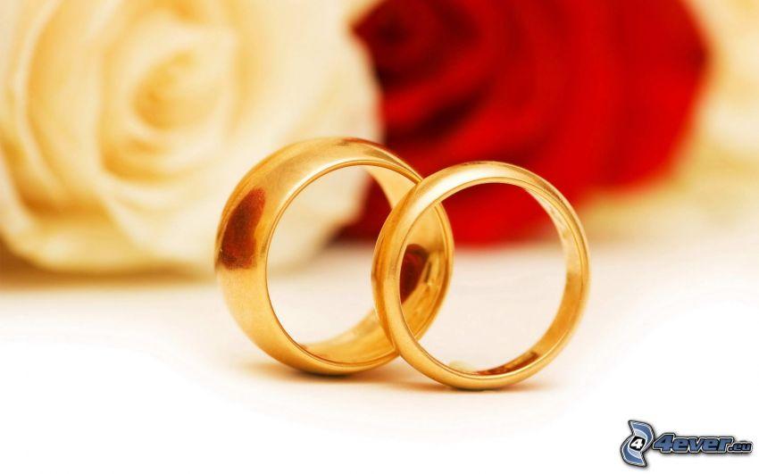 jegygyűrűk, fehér rózsa, vörös rózsa