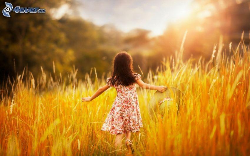 lány a réten, sárga rét, magas fű