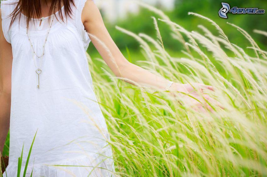 lány a réten, fehér ruha, magas fű