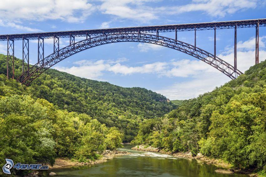New River Gorge Bridge, folyó, erdő