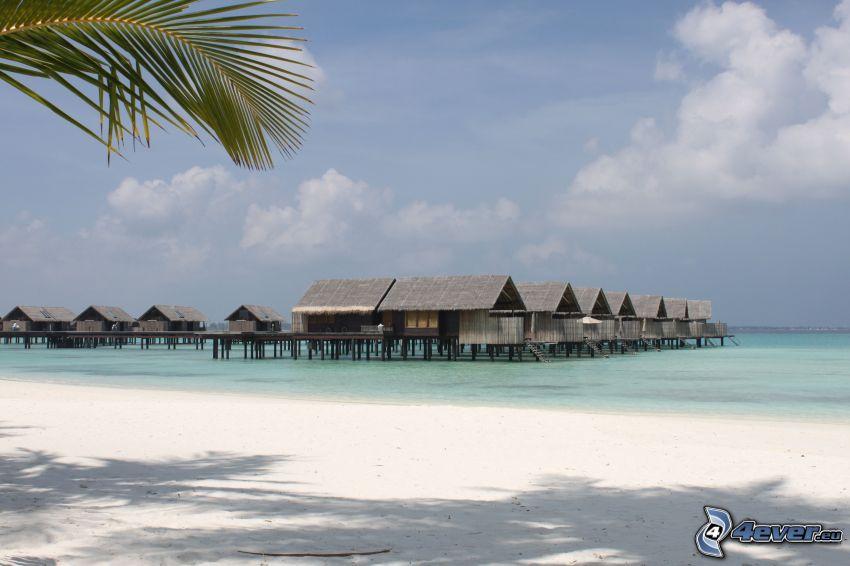 tengerparti nyaralók, tenger, strand, sekély azúr tenger